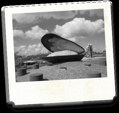 Polaroid Bruinisse