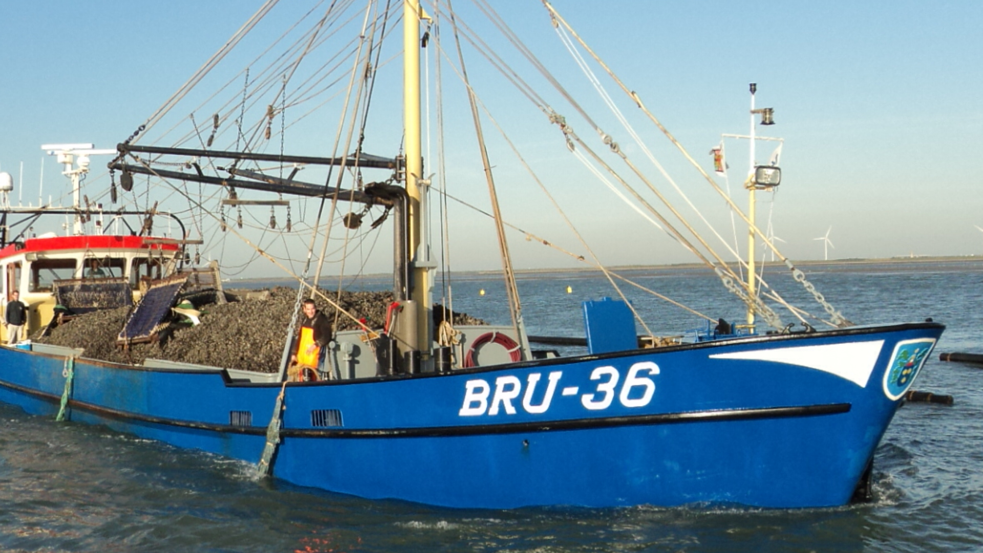 Mosselboot Bruinisse Bru-36